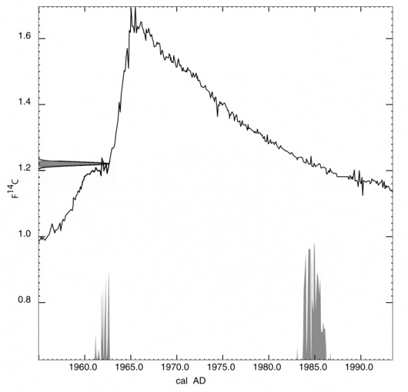 Discussion reporting of 14c data radio carbon dating accuracy 1