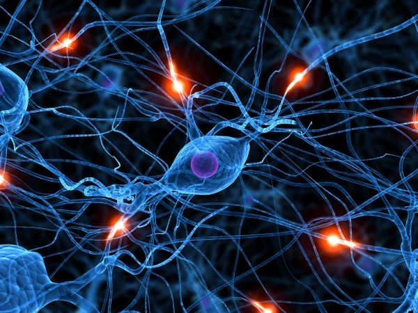 El misterio de las neuronas | Neurociencia | Naukas