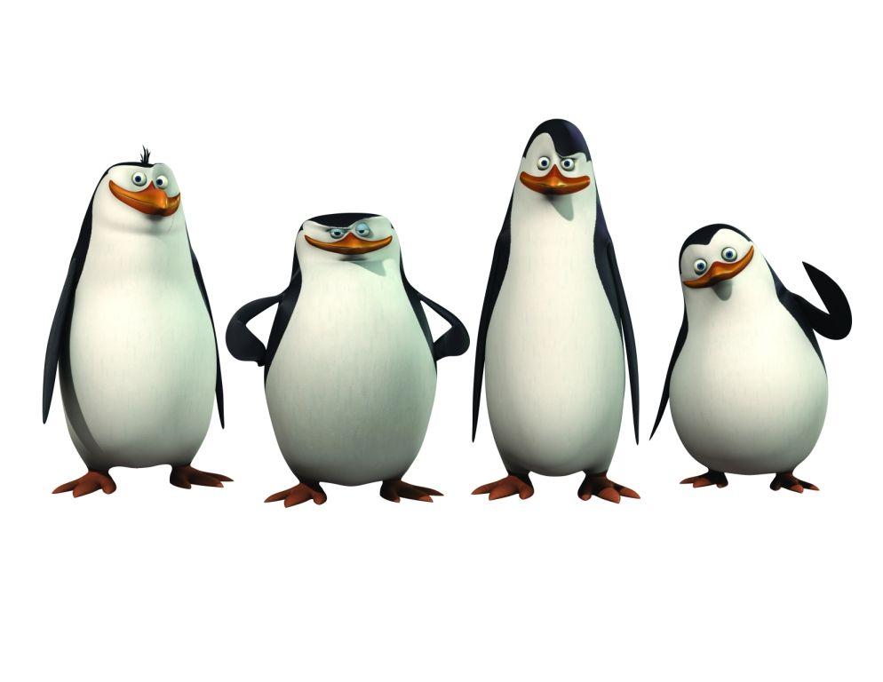 Tienes el cerebro de un pingüino | Curiosidades | Naukas