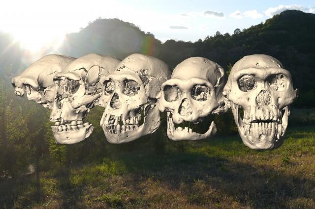 Dmanisi skulls 1 - 5 and landscape
