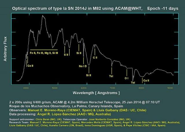 """Espectro óptico de la supernova de tipo Ia SN 2014J en la galaxia M 82 obtenido con el espectrógrafo ACAM del Telescopio William Herschel (ING, Observatorio del Roque de los Muchachos, isla de La Palma, España). Se representa la intensidad o flujo relativo (""""Arbitrary Flux"""", en el eje vertical) frente a la longitud de onda (""""Wavelength"""", el """"color""""), señalándose las líneas de absorción principales detectadas. Además de las bandas de hierro, magnesio y silicio destacan absorciones de azufre, sodio, calcio y carbono. El espectro combina dos exposiciones de 200 segundos usando el prisma V400 de ACAM. Estos datos se obtuvieron el 25 de enero de 2014 a las 7:10 TU. Esto corresponde aproximadamente a la época -11 días, puesto que se espera la supernova alcance su máximo en ese tiempo. Créditos: Observadores: Manuel E. Moreno-Raya (CIEMAT, Spain) y Lluís Galbany (DAS / UC, Chile), Procesado de datos y composición en color: Ángel R. López-Sánchez (AAO / MQ, Australia), Astrónomo de soporte: Chris Benn (ING, Reino Unido), Operador del Telescopio: José Norberto González (ING, Reino Unido). Equipo de investigación: Manuel E. Moreno-Raya (CIEMAT, España), Mercedes Mollá (CIEMAT, España), Ángel R. López-Sánchez (AAO / MQ, Australia), Lluís Galbany (DAS / UC, Chile), Aurelio Carnero (ON, Brasil), Inma Domínguez (UGR, España) y Pepe Vílchez (CSIC / IAA, España)."""