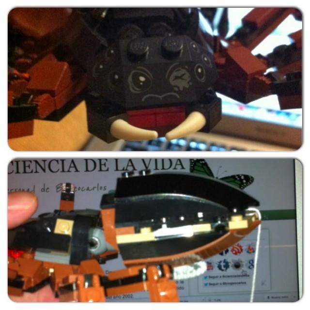 Detalle de los 8 ojos y el par de quelíceros (arriba) y del abdomen sin aguijón (abajo) de la Ella-Laraña de LEGO