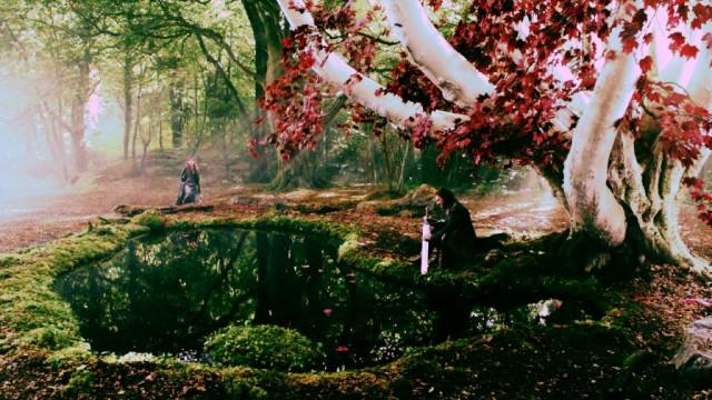 Arciano en el bosque de dioses de Invernalia. Fuente