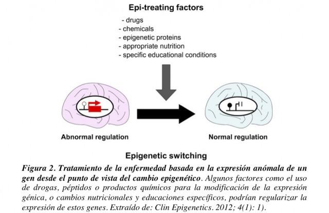 Tratamiento epigenético. Fuente