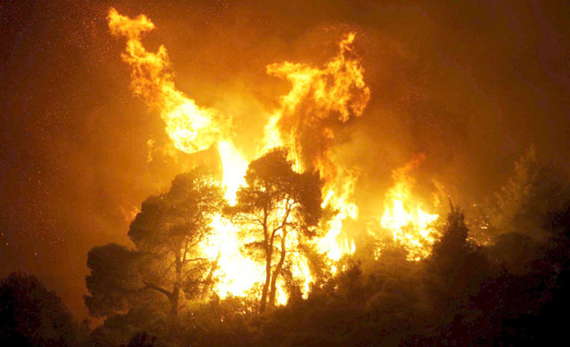 Incendio forestal. Fuente