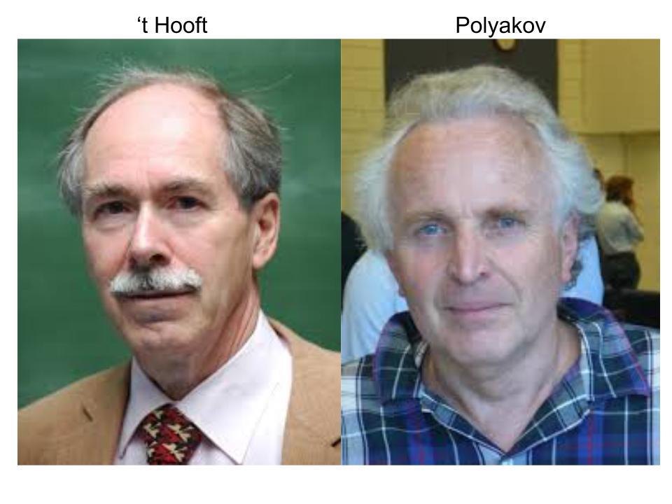 hooftpolyakov