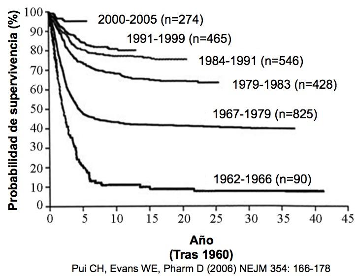 Supervivencia de los niños con LLA después de 1960 (con mejores tratamientos de quimioterapia)