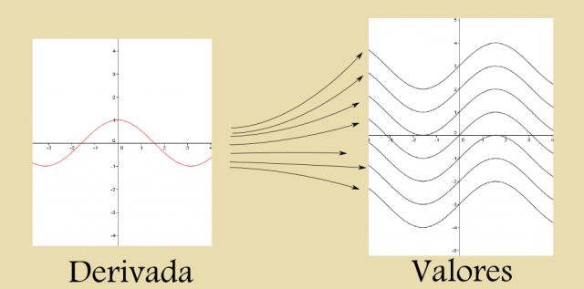 Todas las curvas son candidatas a tener la derivada mostrada.