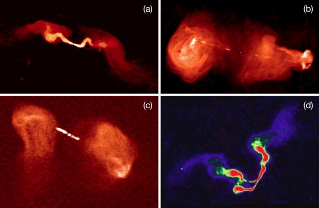 Ejemplos de radiogalaxias de distinta morfología. En el panel A se muestra la radiofuente 3C31, que representa a las radiogalaxias FR-I: muestra dos chorros muy brillantes y lóbulos difusos. El panel B enseña una imagen de la radiogalaxia 3C353, ejemplo del tipo   FR-II, con brillantes lóbulos y chorros difusos. El panel c muestra la radiogalaxia 3C 288, que posee una estructura más compleja: morfología asimétrica en sus lóbulos, estando uno difuminado. Finalmente la curiosa radiogalaxia 3C 75 se muestra en el panel d como ejemplo de radiofuente de doble WAT (Wide Angle Tail). Crédito: NRAO/AUI.