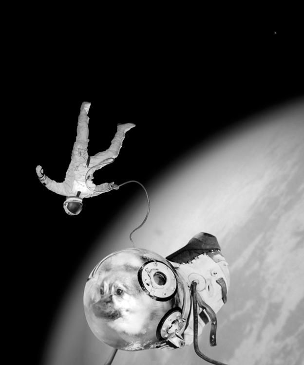 ES_Sputnik 1 #583488728