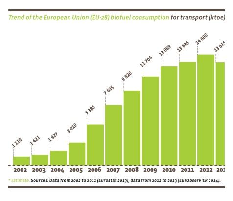 Consumo de biofuel en la Unión Europea de 2002 a 2013.