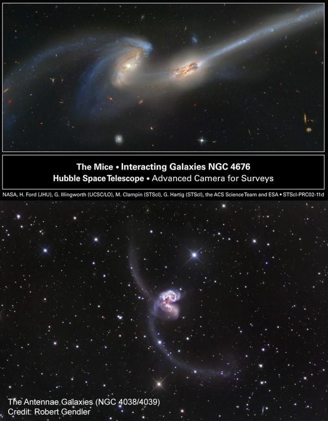 """Imágenes de las galaxias interactuantes """"Los Ratones"""" (The Mice, NGC 4676, arriba) y """"Las Antenas"""" (NGC 4039/4039, abajo). Créditos: Galaxias de los Ratones: NASA, H. Ford (JHU), G. Illingworth (UCSC/LO), M.Clampin (STScI), G. Hartig (STScI), the ACS Science Team, y ESA,  Galaxia de las Antenas: Robert Gendler."""
