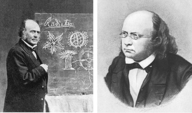 Agassiz (izquierda) y Schimper (deracha) Fuente: Wikipedia