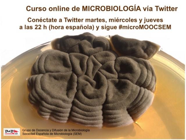 microMOOCSEM 3