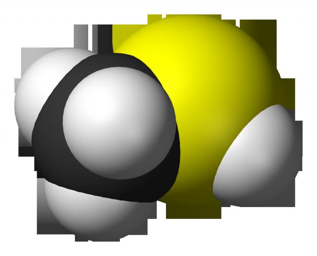 Mercaptano de metilo o metanotiol (CH3SH). Crédito: Ben Mills.