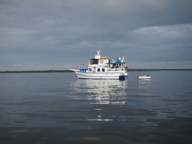 Queen Mabel, el barco de la expedición