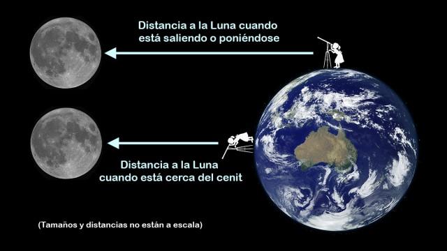 Distancia a la luna dependiendo de la posición en la que la observadora se encuentra sobre la Tierra. Si la luna está saliendo o poniéndose estará más lejos de ella (arriba) que si está sobre su cabeza, alta en el cielo (abajo). Los tamaños y las distancias obviamente no están a escala. Crédito: Ángel R. López-Sánchez. Imagen de la luna: Paco Bellido.