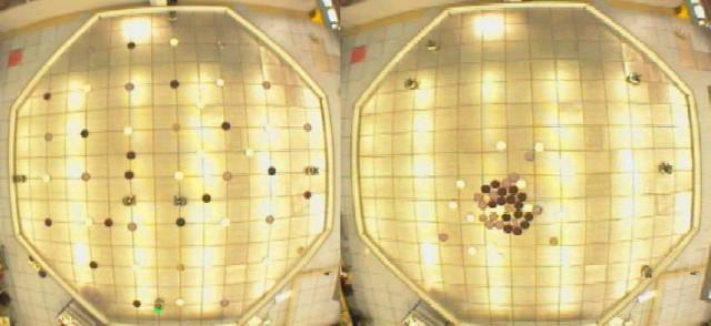 Experimento de clasificación con seis robots programados con reglas basadas en clustering de hormigas (fuente).
