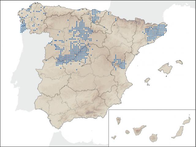 Mapa de distribución actual del visón americano (fuente)
