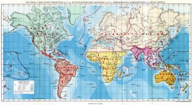 Mapa del mundo con las regiones biogeográficas de Wallace