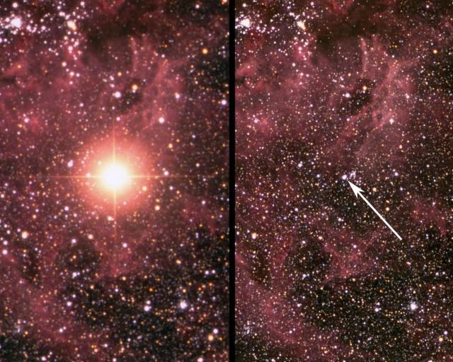 Figura 1. La supernova SN 1987 después de que explotara en febrero de 1987 (izquierda) y una imagen de la misma zona dentro de la Nebulosa de la Tarántula en la Gran Nube de Magallanes antes de la explosión (derecha). Crédito: David Malin / Australian Astronomical Observatory.