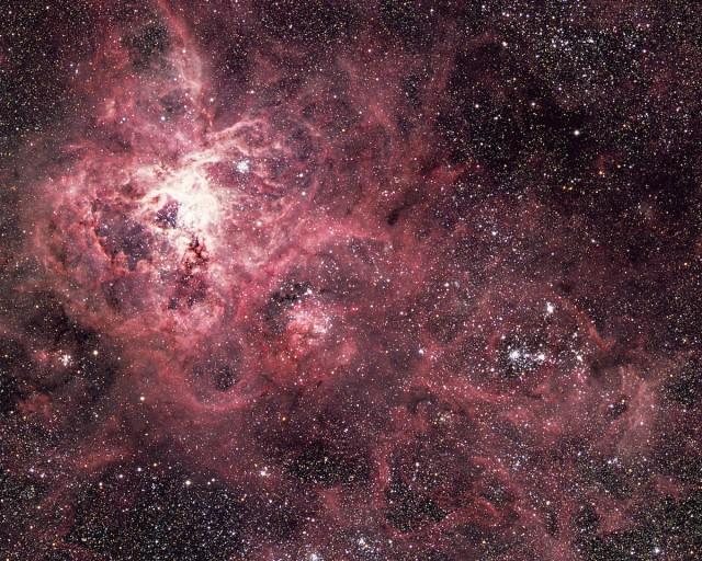 Figura 2. Esta imagen obtenida como composición de distintas placas fotográficas conseguidas a foco primario del Telescopio Anglo-Australiano (AAT) por el astrofísico David Malin (AAO) muestra la región de la Nebulosa de la Tarántula dentro de la Gran Nube de Magallanes. La parte central de este objeto se localiza en la esquina superior izquierda, mientras que la estrella que explotó como SN 1987A (que se puede identificar en la imagen de alta resolución) se encuentra en la esquina inferior derecha. Crédito: David Malin / Australian Astronomical Observatory.