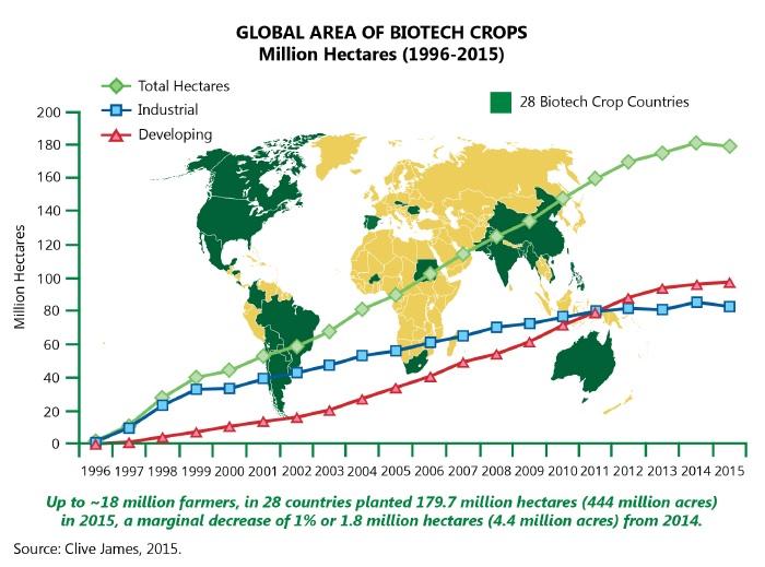 Área mundial de cultivo destinado a biotecnología, 2015. (Fuente)