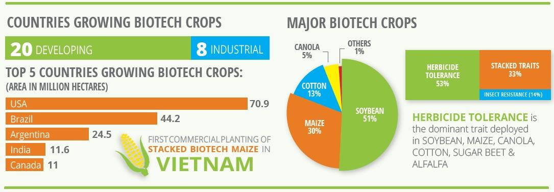 Situación de cultivos biotecnológicos. (Fuente)