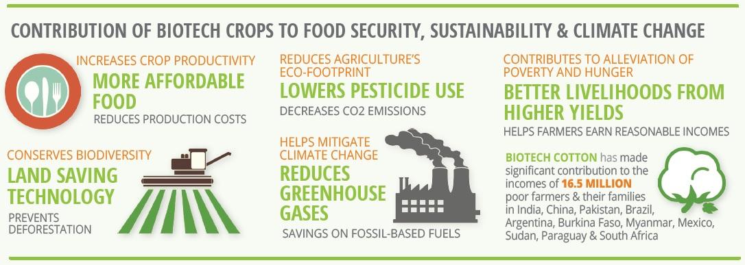 Contribución de la biotecnología agraria a la seguridad alimentaria, sostenibilidad y cambio climático. (Fuente)