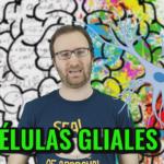 Neurocosas capítulo 2: ¿Para qué sirven las células gliales?
