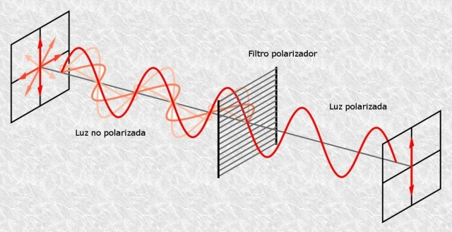 A la izquierda luz no polarizada: los fotones vibran en múltiples planos. Al pasar un filtro –o rebotar en ciertas superficies- la luz se polariza: los fotones vibran en un único plano.