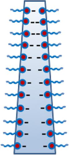Figura 08: Corte de una pared vertical mostrando el efecto gravitatorio y la repulsión electrostática
