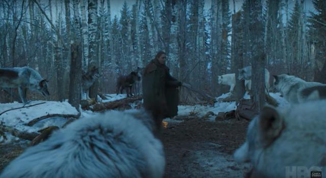 La manada de Nymeria