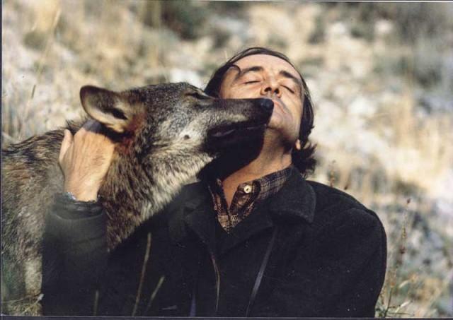 Félix Rodríguez de la Fuente con un lobo. Fuente