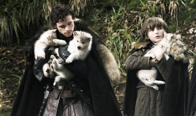 Rob y Bran, el día que encontraron a los cachorros huargo. Fuente