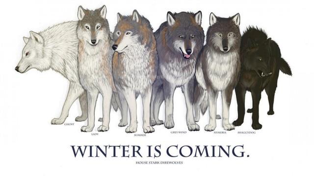 Variaciones de color en los lobos de Juego de tronos. Fuente