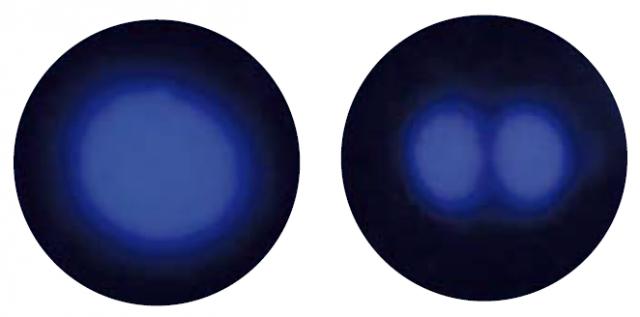 Investigación y Ciencia, nº 401, febrero de 2010. Páginas 8 y 9, «La forma de los átomos».]