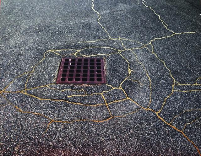 Una obra de la artista Rachel Sussman. Fuente: página web de la artista http://www.rachelsussman.com/