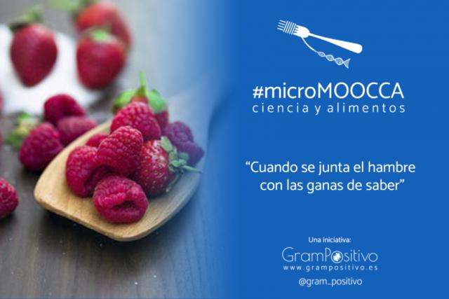 Promo-inicial-microMOOCCA-816x544