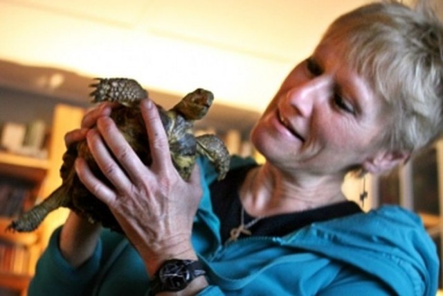 Ursula K. Heise, Profesora en la Universidad de California y miembro del Instituto de Medio Ambiente y Sostenibilidad de la UCLA. Heise investiga sobre biodiversidad, especies amenazadas y literatura.
