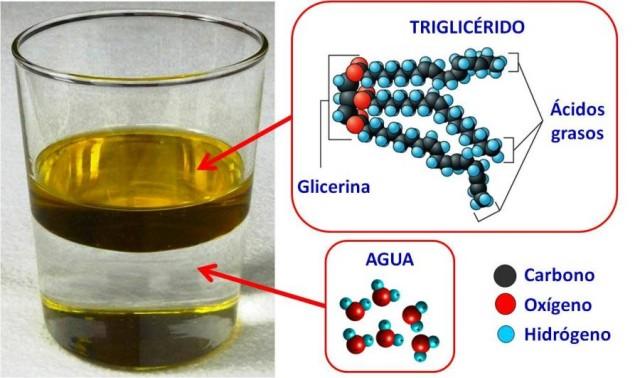 Estructuras moleculares del aceite y del agua