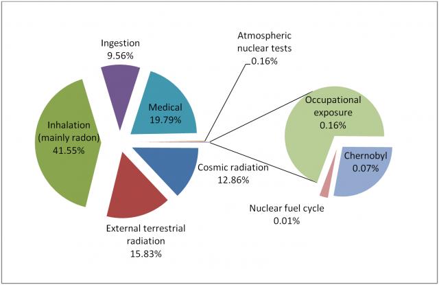Fuentes de exposición a la radiación. Fuente: IAEA.