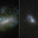 Las Estrellas Errantes de las Nubes de Magallanes