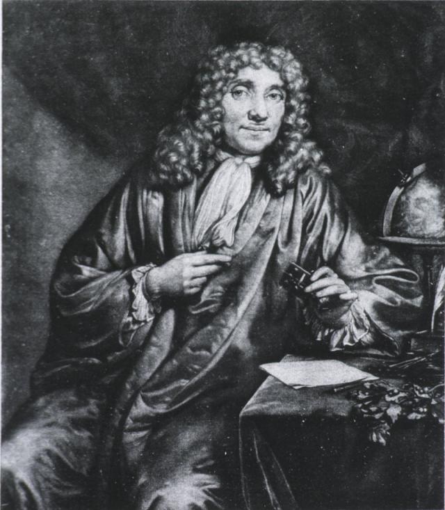 Retrato de Anton Van Leeuwenhoek, inventor del microscopio. Confundió las hembras secas de cochinilla con semillas vegetales. Más tarde  corrigió su error y fue el primero en dar a conocer el origen animal del pigmento en Europa.