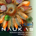 Os presentamos BCAM NAUKAS, un evento en el día de Pi (14 marzo)