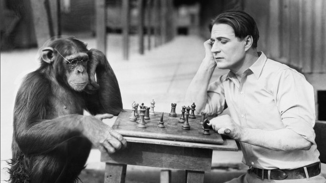 chimp_human_shutterstock_16x9_99733508