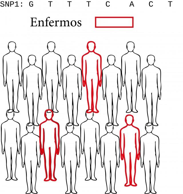 Se busca una variante genética en un gran conjunto de individuos (no necesariamente con la enfermedad) y se comprueba que porcentaje presenta la enfermedad. Si son pocos, la variante no está asociada a la enfermedad.