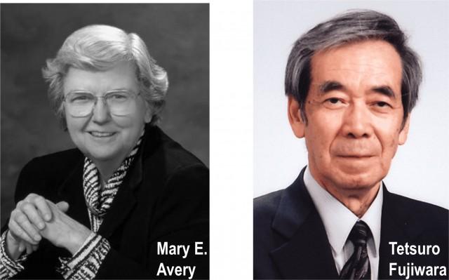 Mary Avery, en Harvard, estableció en 1959 que la falta de surfactante era la causa del fallo respiratorio en neonatos prematuros. Pero no fue hasta 1980 cuando Tetsuro Fujiwara, en Japón, demostró que esos neonatos prematuros podían salir adelante si se les suministraba surfactante exógeno, obtenido a partir de extractos de pulmones animales