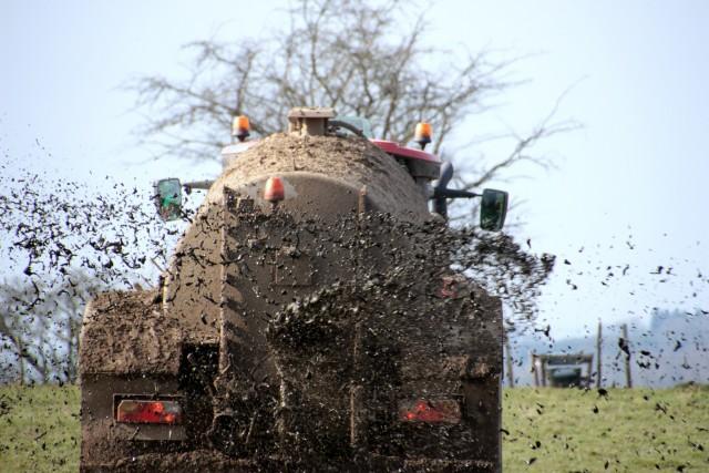 Montones de estiércol animal listos para ser esparcidos en el campo como abono
