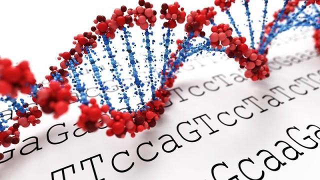 Una secuencia de ADN puede representarse como una serie de letras del alfabeto {A, T, C, G}.